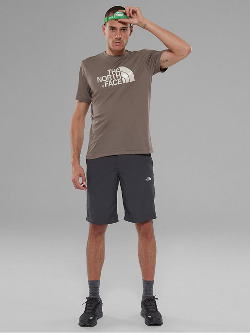 99a888795 THE NORTH FACE M TANKEN Shorts