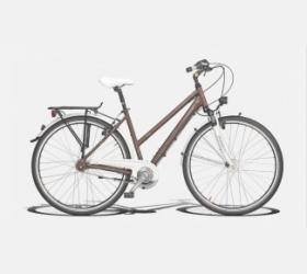 Да покараме велосипеди
